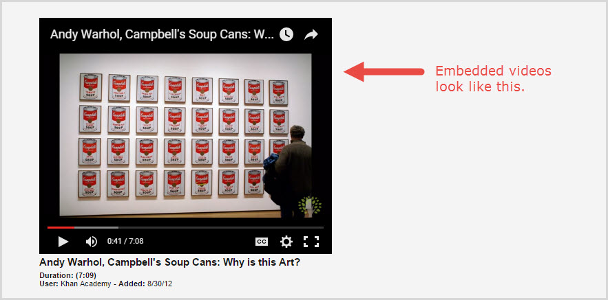 How a video looks when embedded