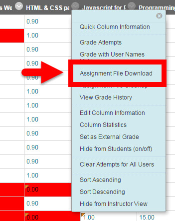 assignment menu for file download option