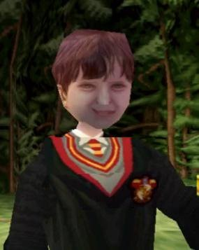 A very poor rendering of a human face from a Harry Potter game for the PlayStation 1